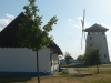 Kopie-P1130908
