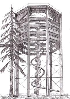 rozhledna Stezka korunami stromů – Lipno